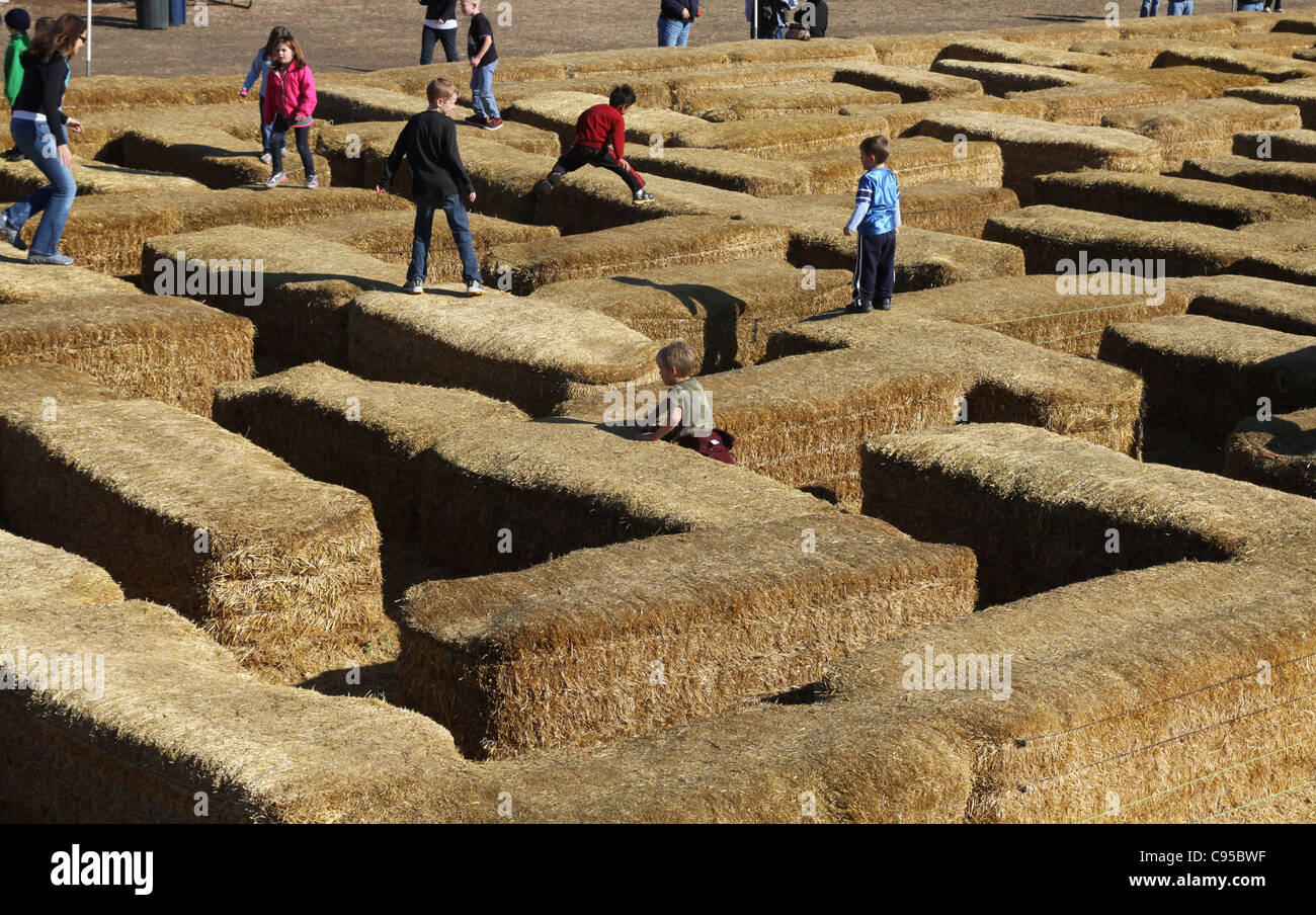 Kids playing on a hay bale maze at Sever's Corn Maze in Minnesota. - Stock Image