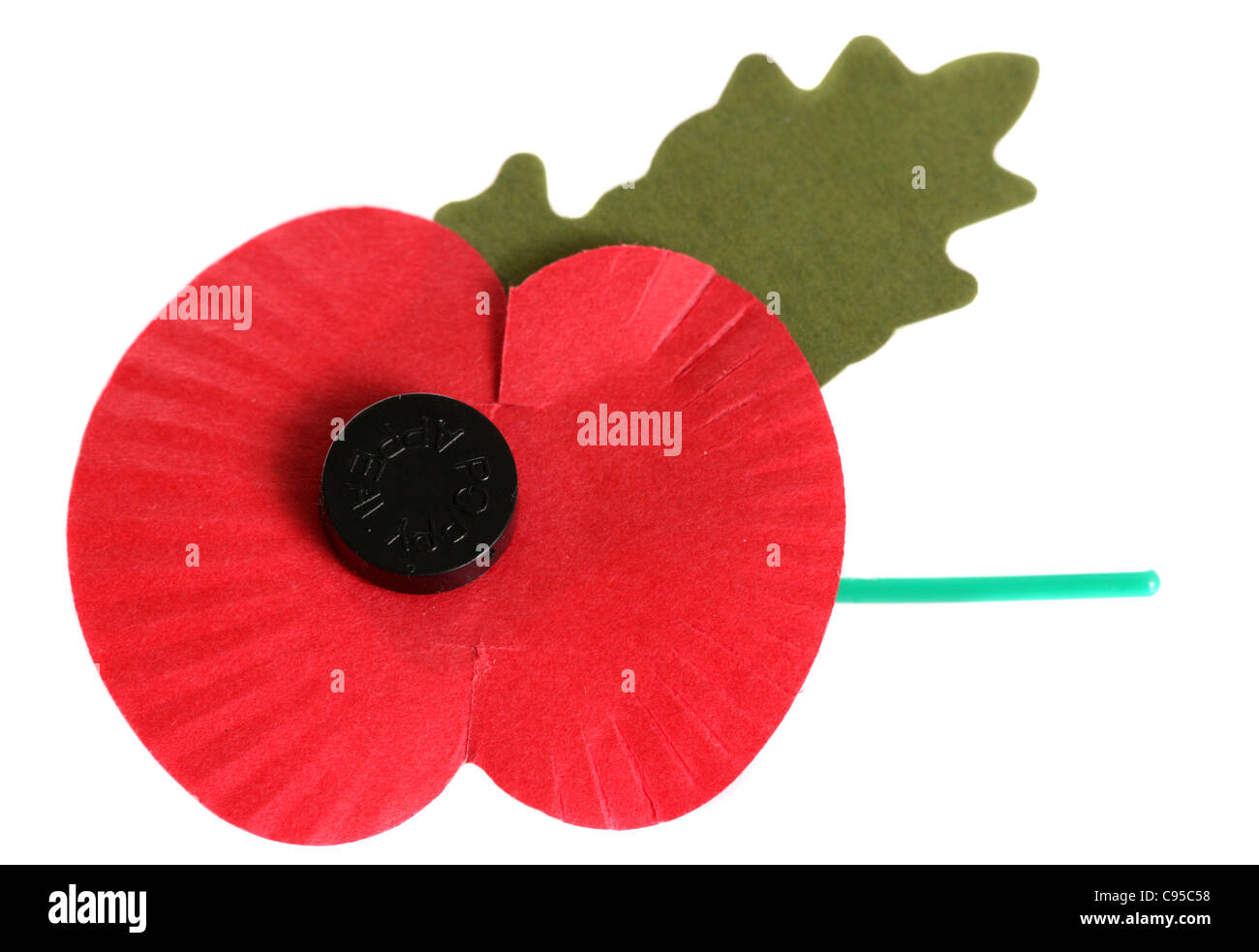 Remembrance day poppy on white background - Stock Image