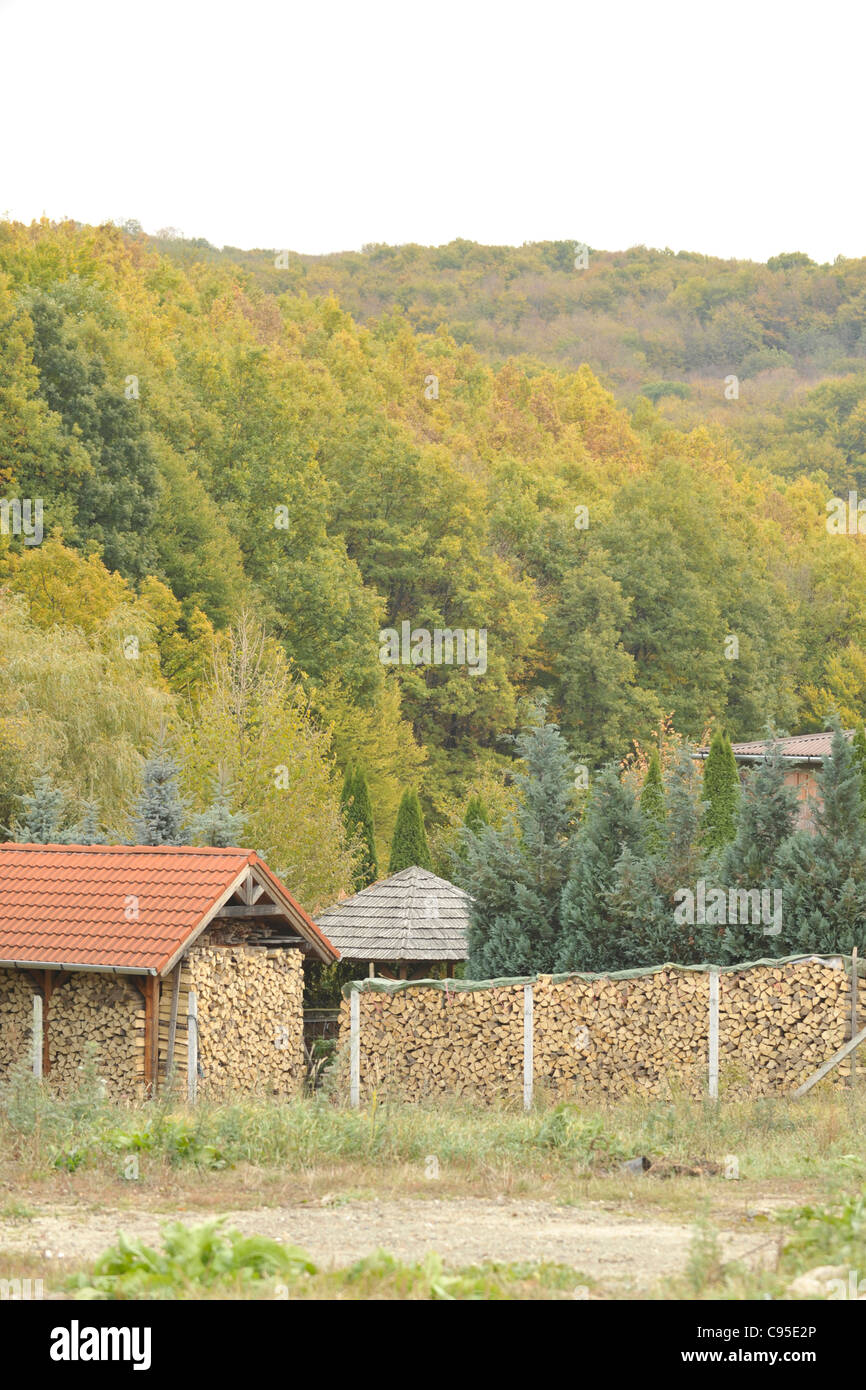 log pile in mountains, hungary - Stock Image