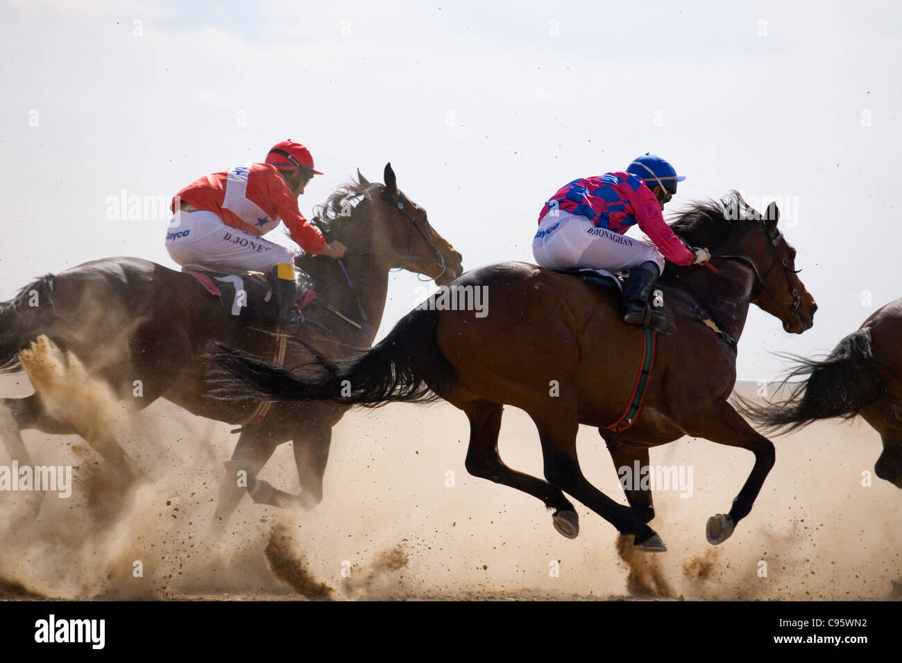 Horse racing in the outback at the Birdsville Cup Races.  Birdsville, Queensland, Australia - Stock Image