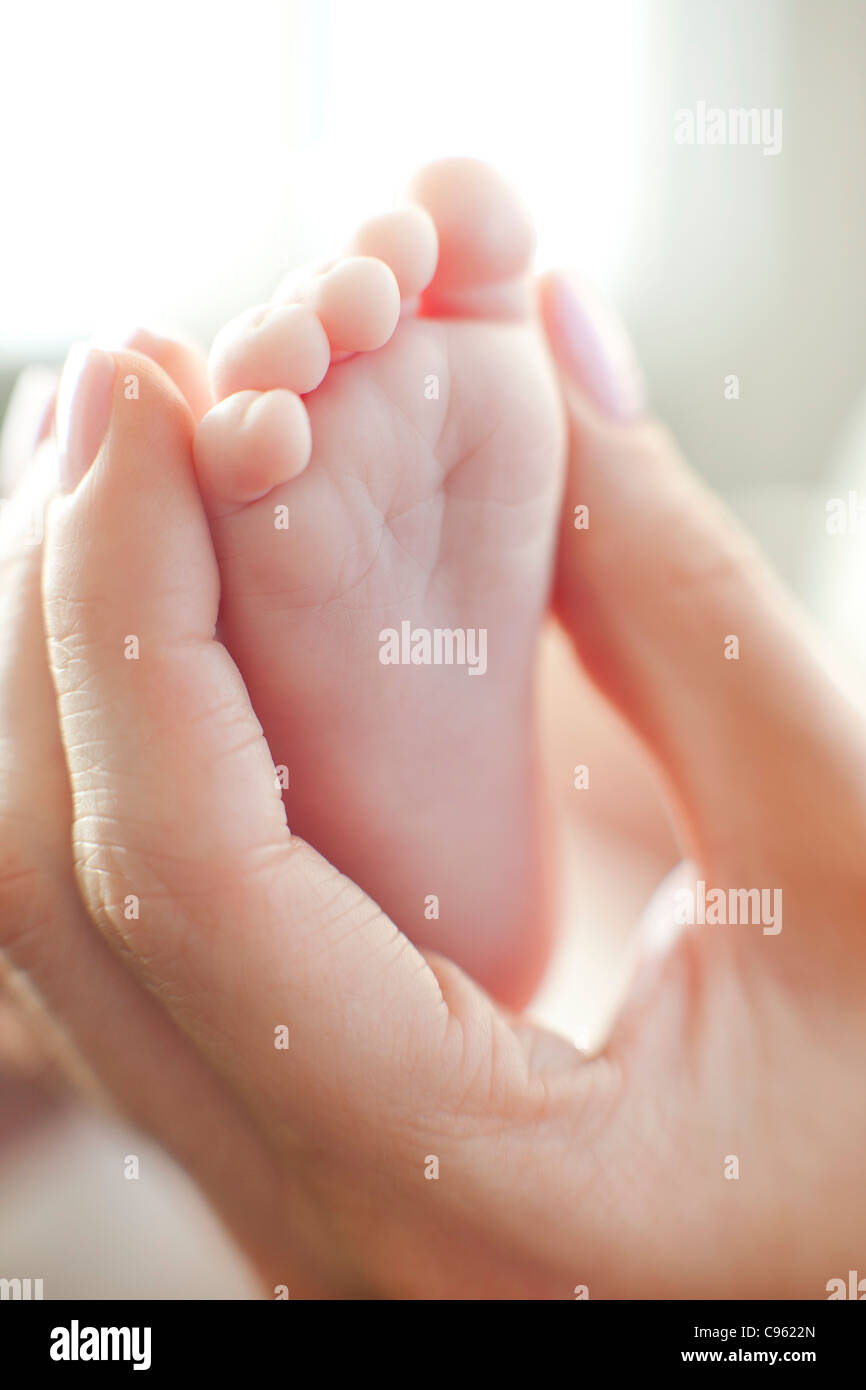 Baby's foot. Mother holding her 2 month old baby's foot. - Stock Image