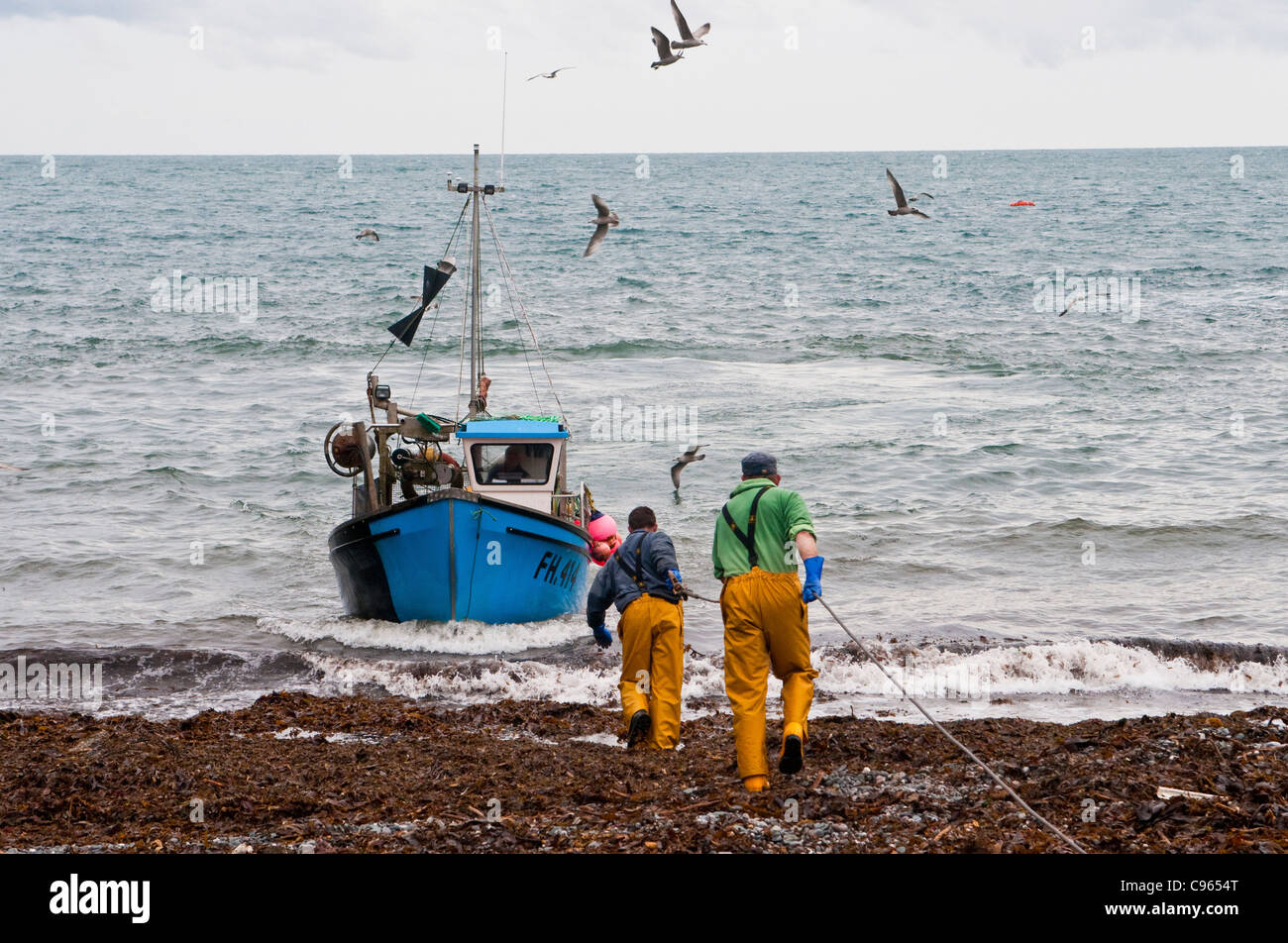 Fishermen in Cadgwith Cornwall helping in a crab fishing boat - Stock Image