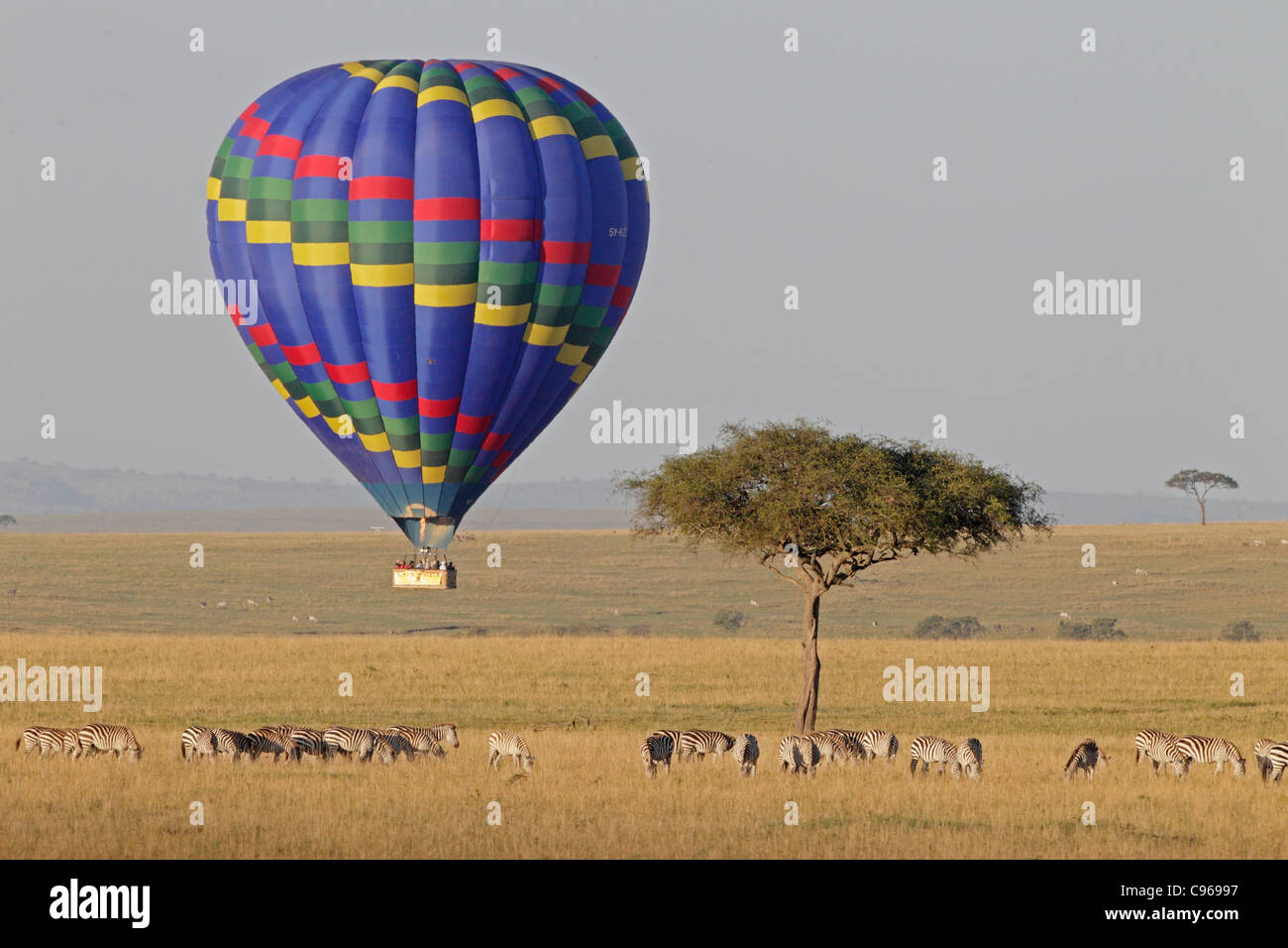 Hot air balloon over the Masai Mara - Stock Image