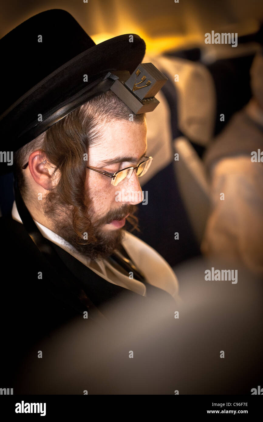 Hasidic jew praying on airplane with tefillin - Stock Image