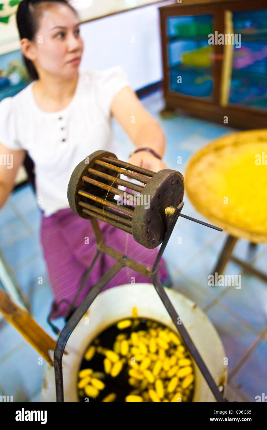 Silk spinner - Thailand - Stock Image