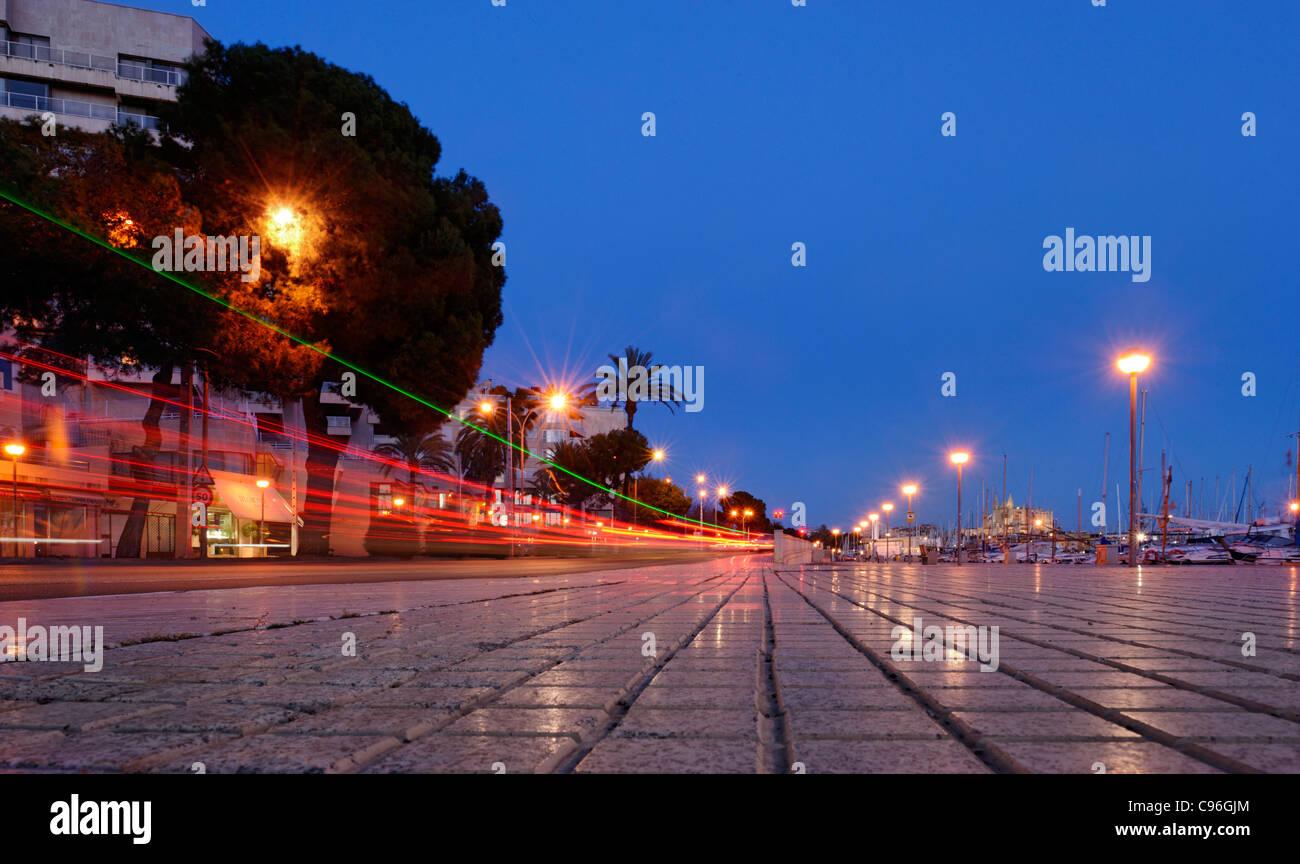 Evening mood in the port of Palma, lifestyle, Avinguda de Gabriel Roca, Palma de Majorca, Majorca, Balearic Islands, - Stock Image