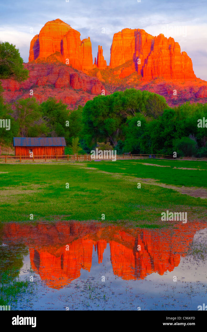Meadow reflecting pool at Red Rock Crossing, Arizona, Coconino National Forest, Sedona, Cathedral Rock spires Oak - Stock Image