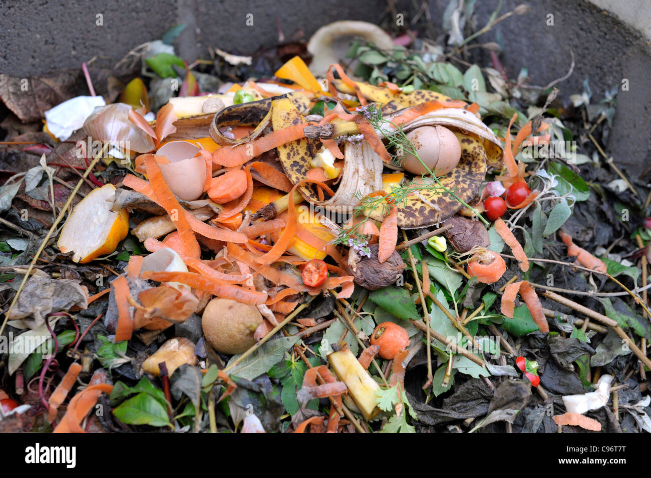 Food Compost Bin For Kitchen