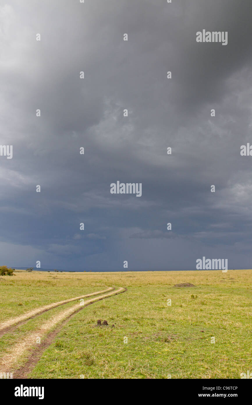 View of a rainstorm over the Masai Mara - Stock Image