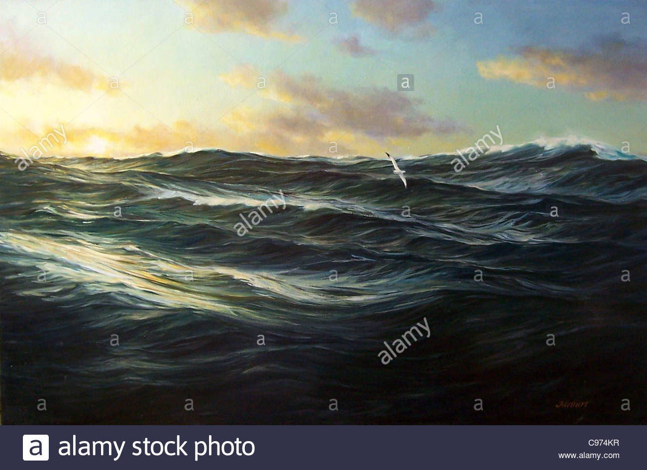 Albatross Atlantic - Stock Image