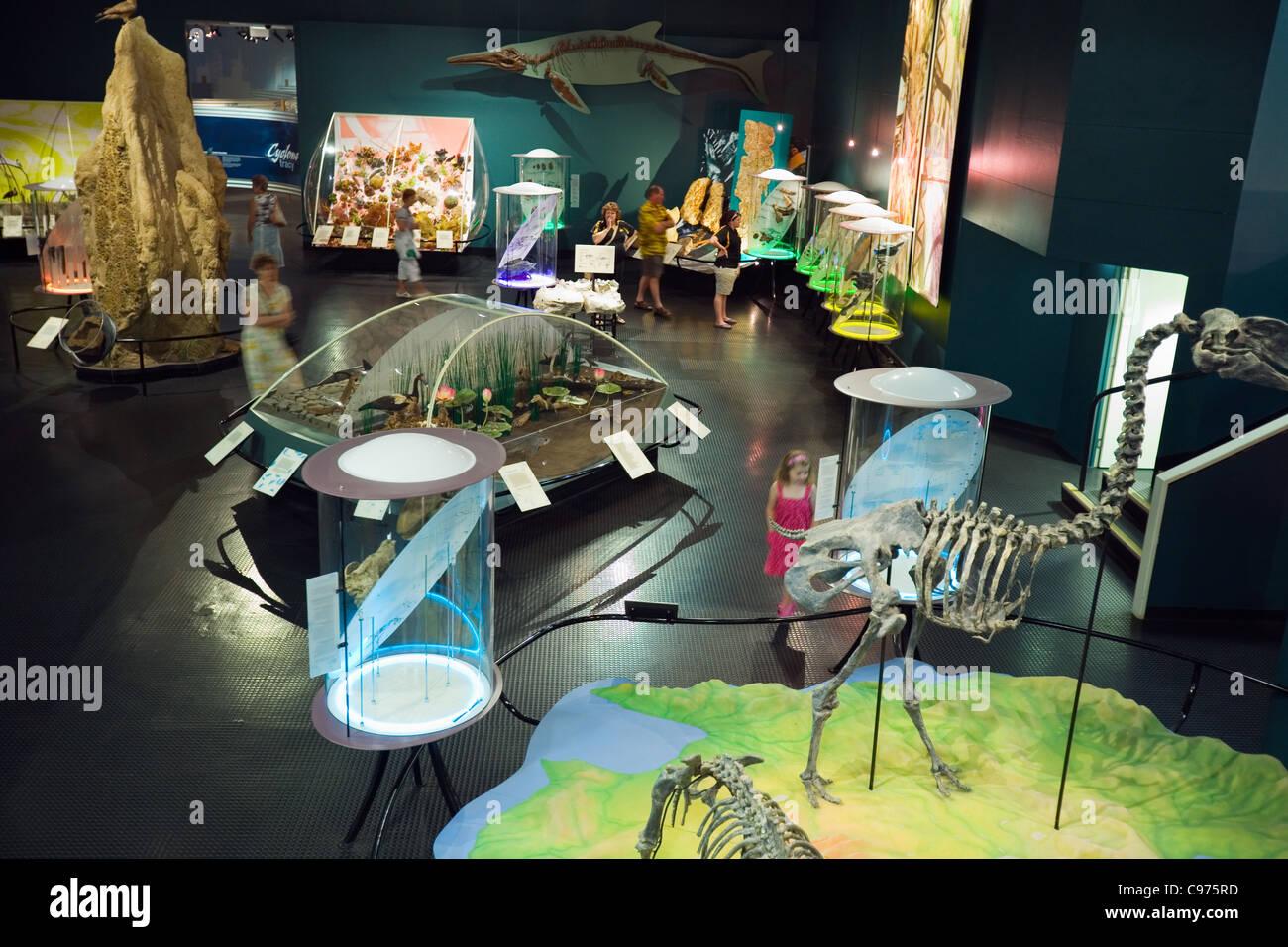 Exhibition Displays Australia : Interactive museum exhibition stock photos