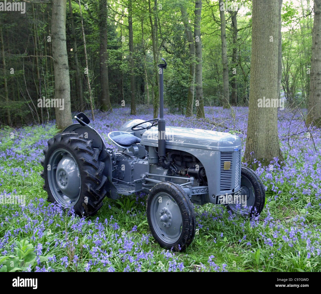 Vintage Ferguson tractor TEA20 - Stock Image