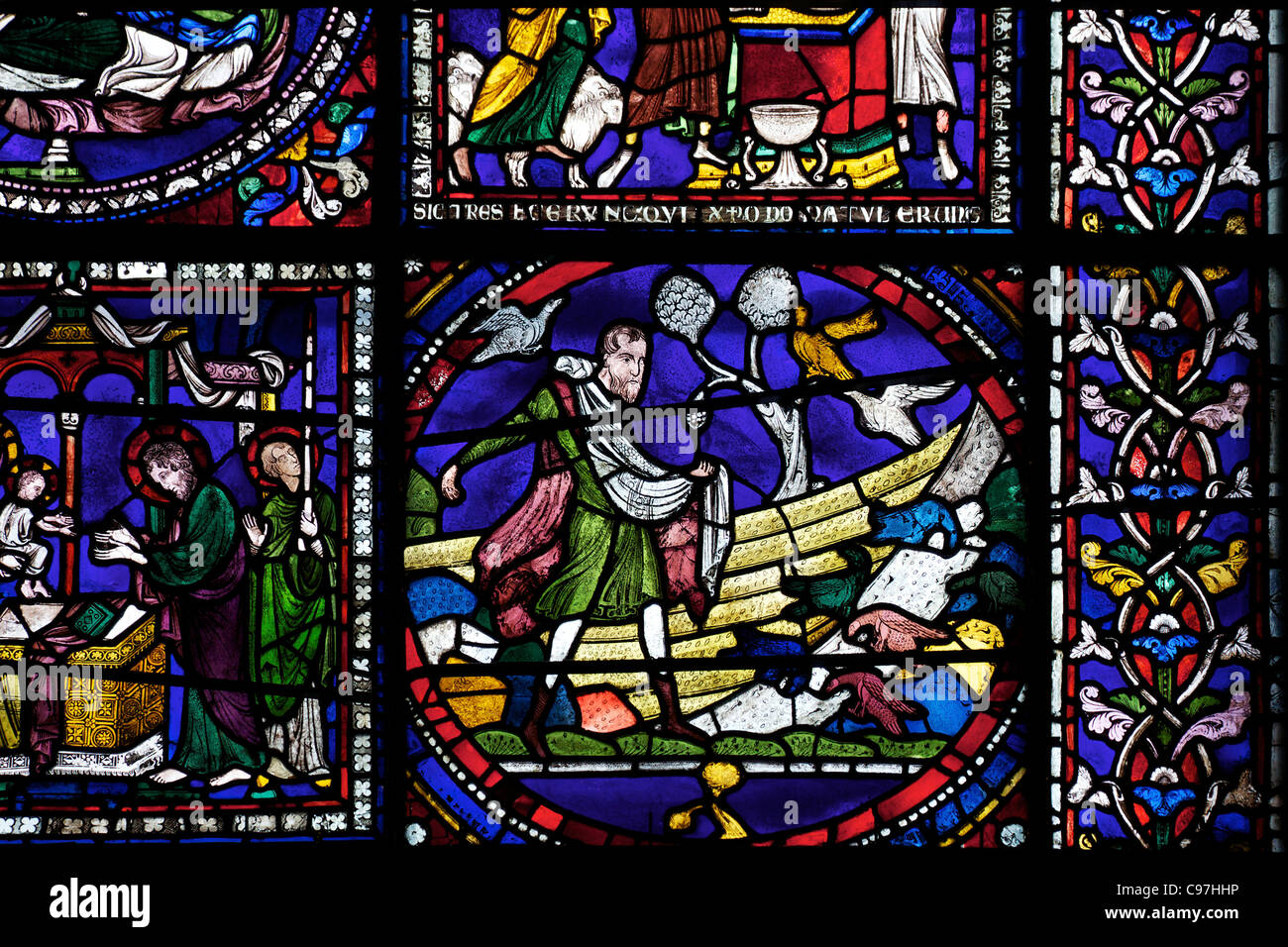The Sower on Stony Ground with Birds, Sixth Typological Window, North Quire Isle, n.XV, medieval stained glass, - Stock Image