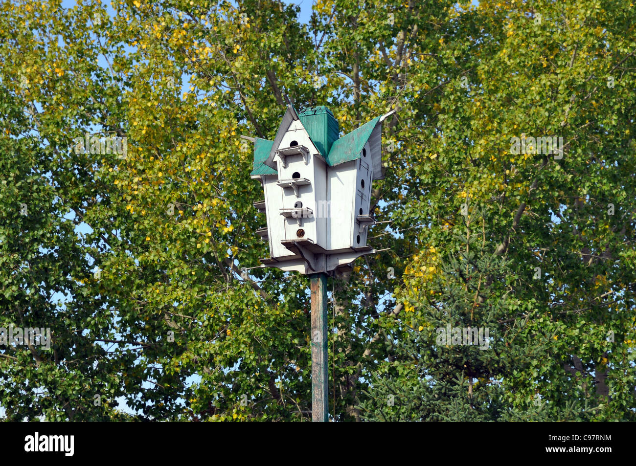 Wooden Birdhouse High Up Among The Trees - Stock Image