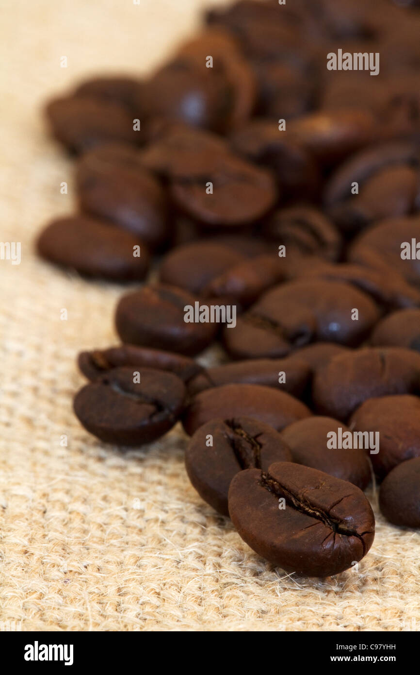 Coffee beans on hessian - Stock Image