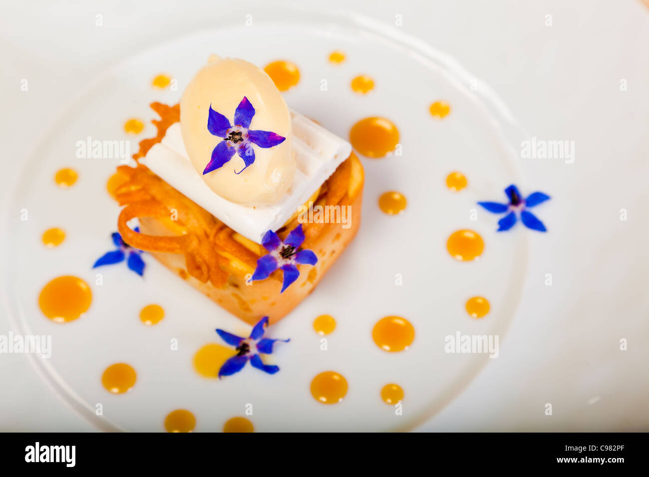 New version of the lemon tart., CHATEAU SAINT-MARTIN & SPA - 2490 Avenue des Templiers - BP 102 - 06142 VENCE - Stock Image