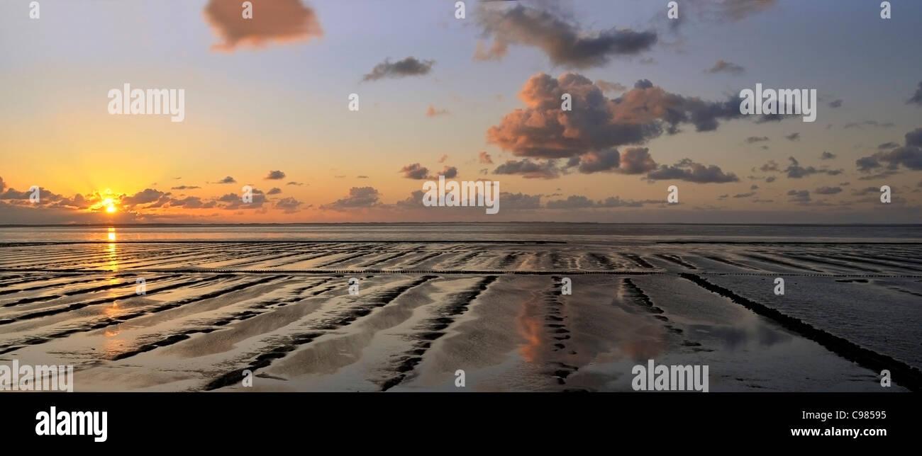 Sylt marshland, wadden sea, Munkmarsch on Sylt, Schleswig-Holstein, Germany, Europe Stock Photo