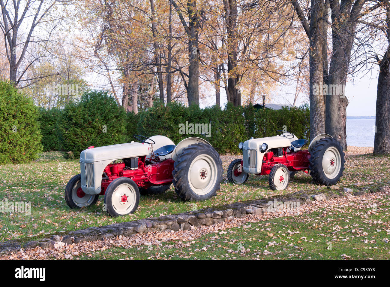 2 restored Ford 8N 1948 tractors Stock Photo: 40132940 - Alamy