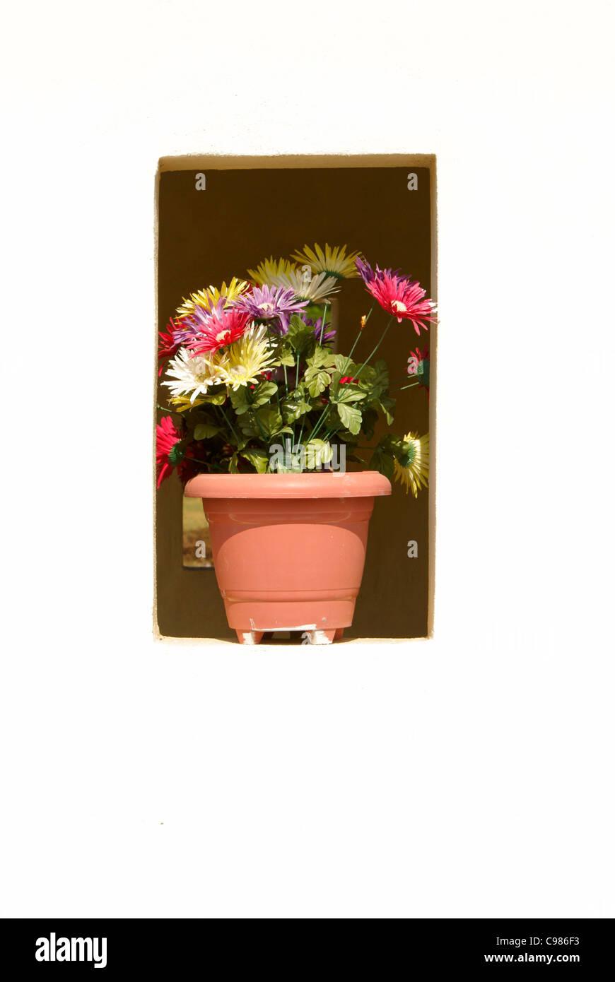 Flowers in the niche of a tomb in the town cemetery, El Quelite near Mazatlan, Sinaloa, Mexico - Stock Image