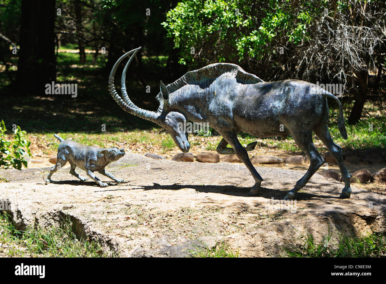 A bronze statue of the dog Jock of the Bushveld  engaging a roan antelope on display in the Jock of the Bushveld - Stock Image