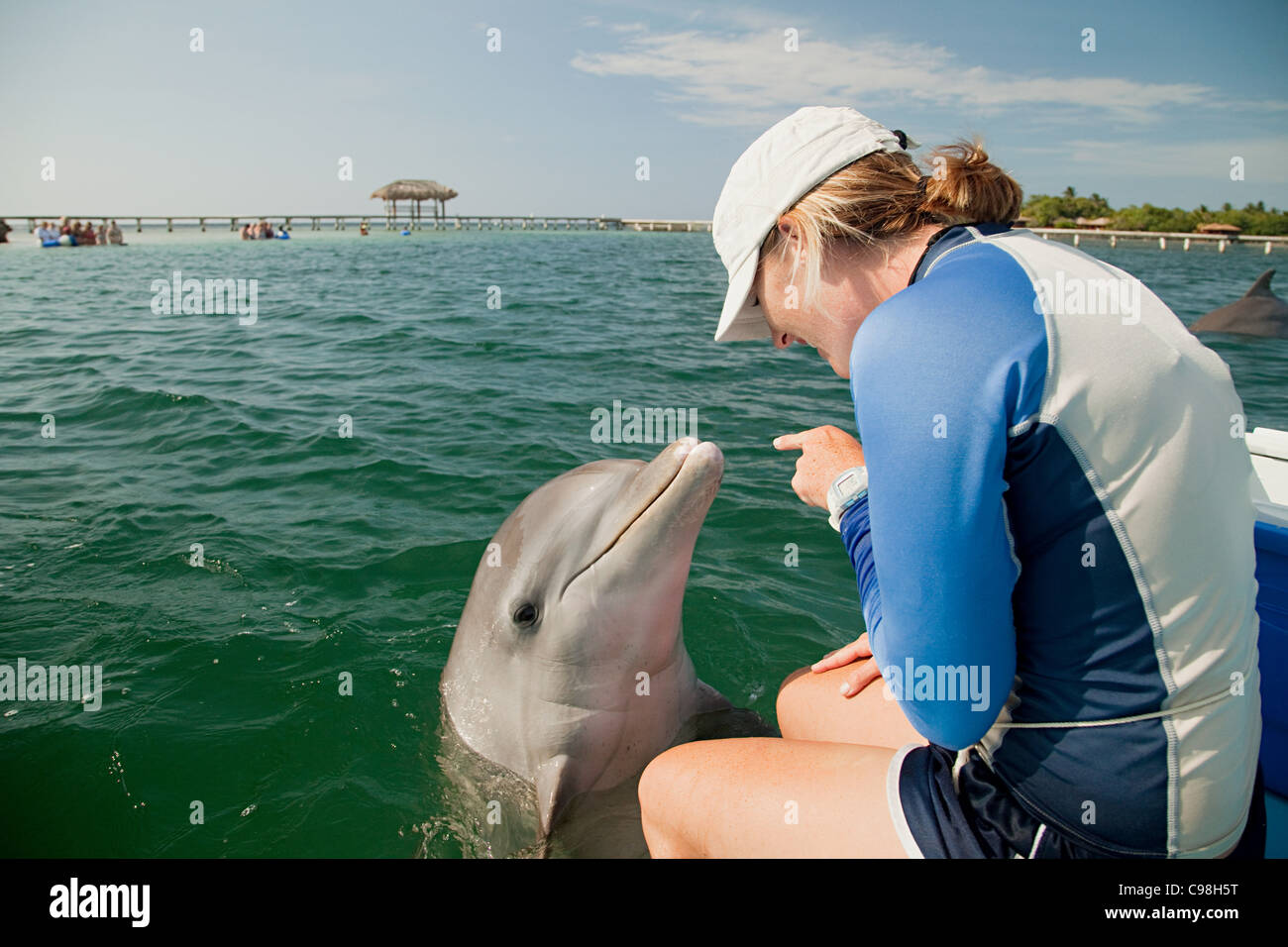Young woman pointing bottlenose dolphin - Stock Image