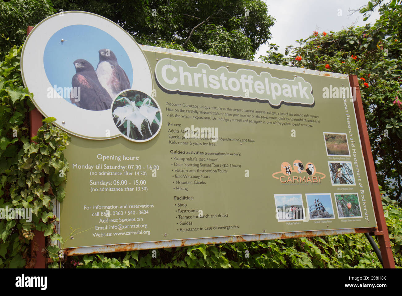 Curaçao, Netherlands Lesser Leeward Antilles, ABC Islands, Dutch, Piscadera, Christoffelpark, CARMABI, biodiversity Stock Photo