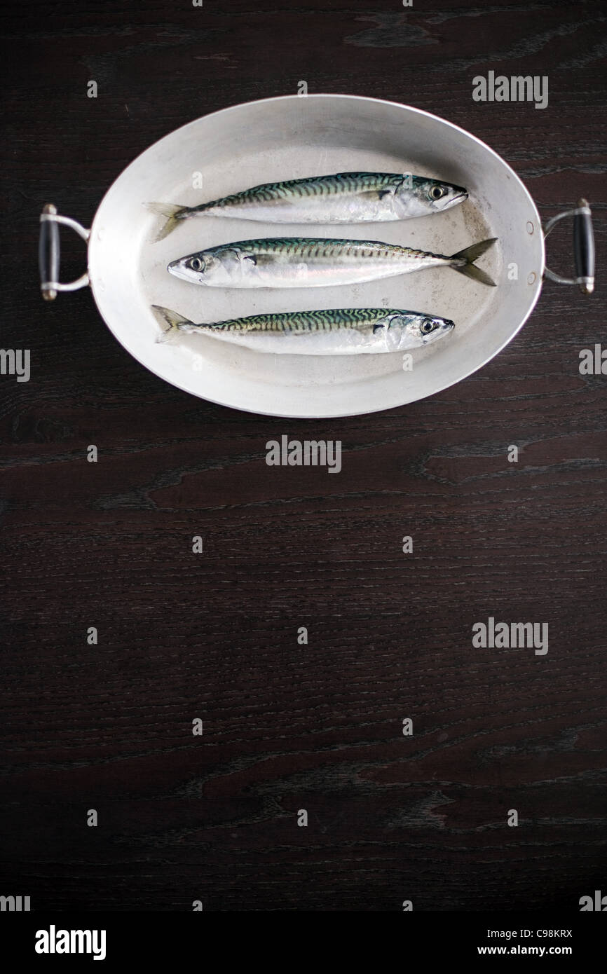 Three sustainable fishes dish - Stock Image
