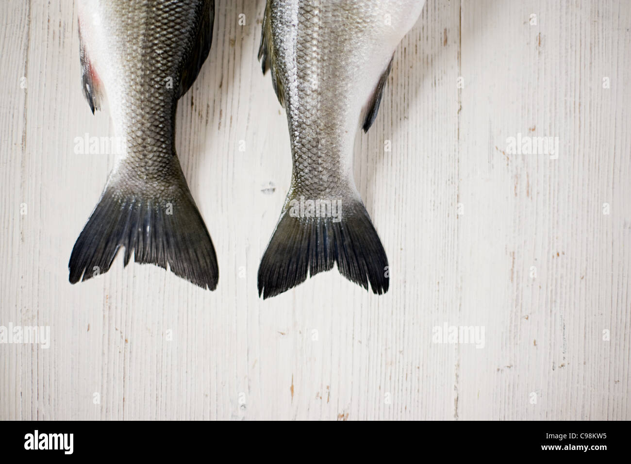 The tails two fish side by side - Stock Image