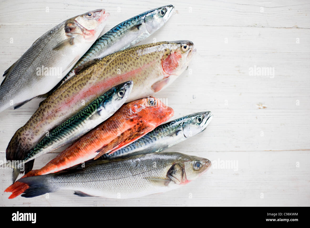 A selection raw fish - Stock Image