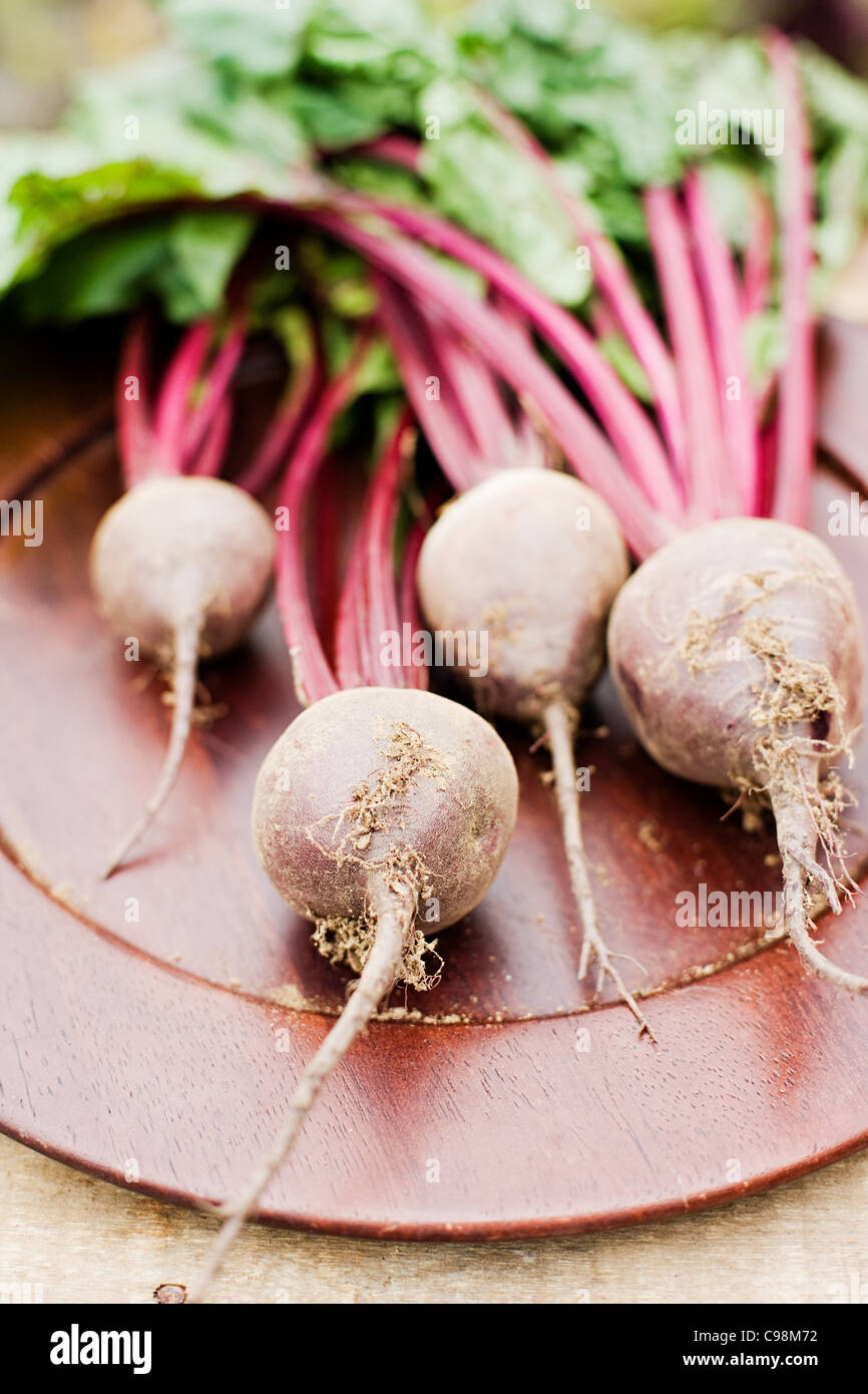 Fresh beetroot with stems - Stock Image