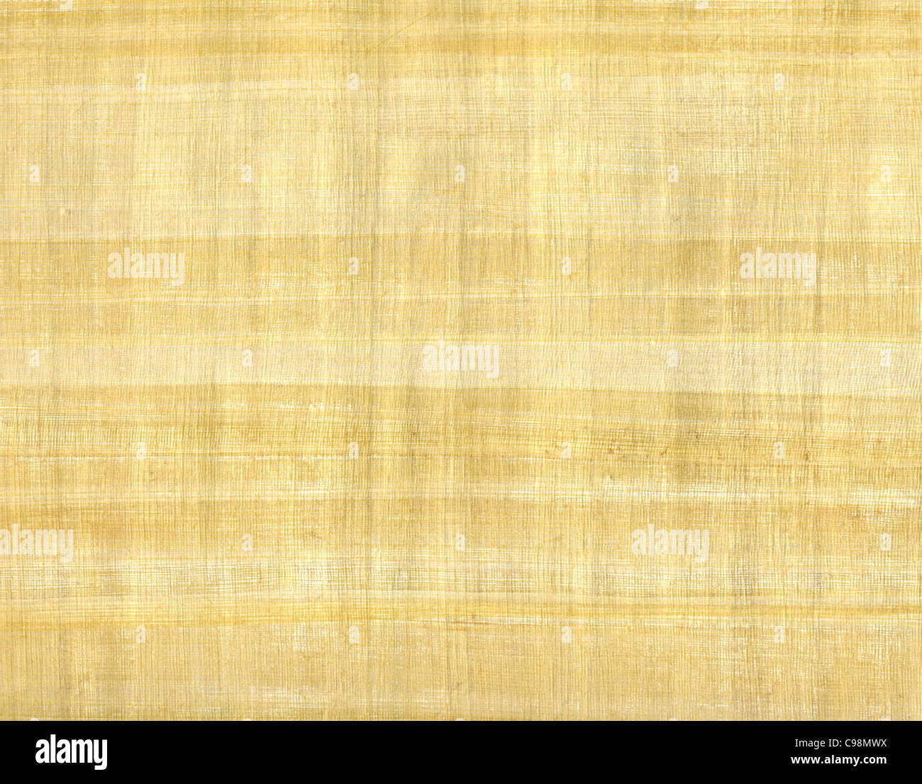 full frame detail of a sheet of papyrus paper Stock Photo: 40144662 ...