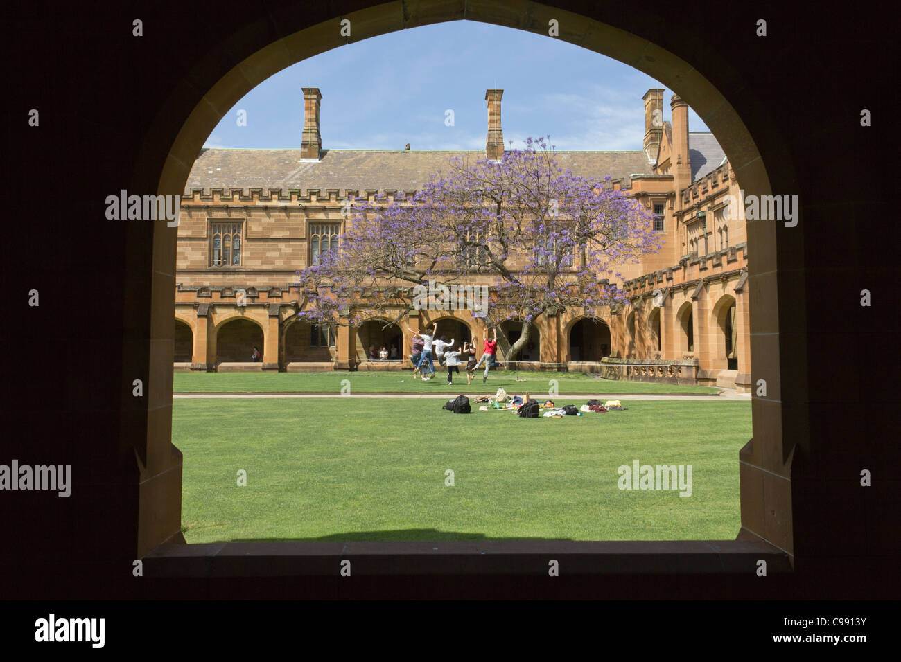 University of Sydney main quadrangle, Sydney, Australia - Stock Image