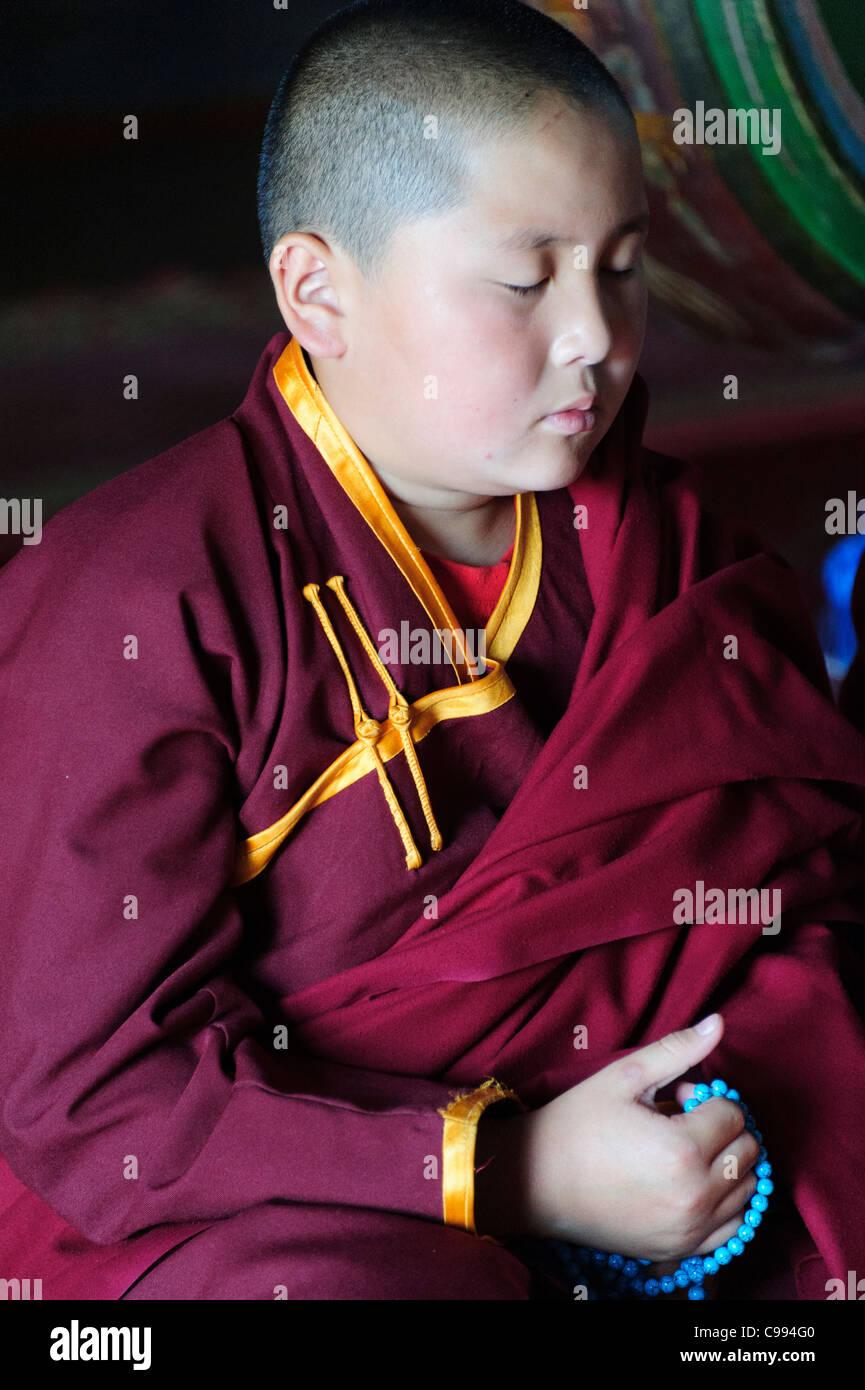 Monks praying in Shankh monastery (khiid), Mongolia - Stock Image