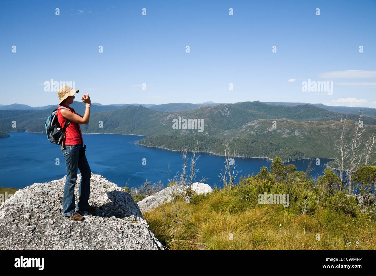 A hiker looks out over Lake Mackintosh from Mount Farrell.  Tullah, Tasmania, Australia - Stock Image