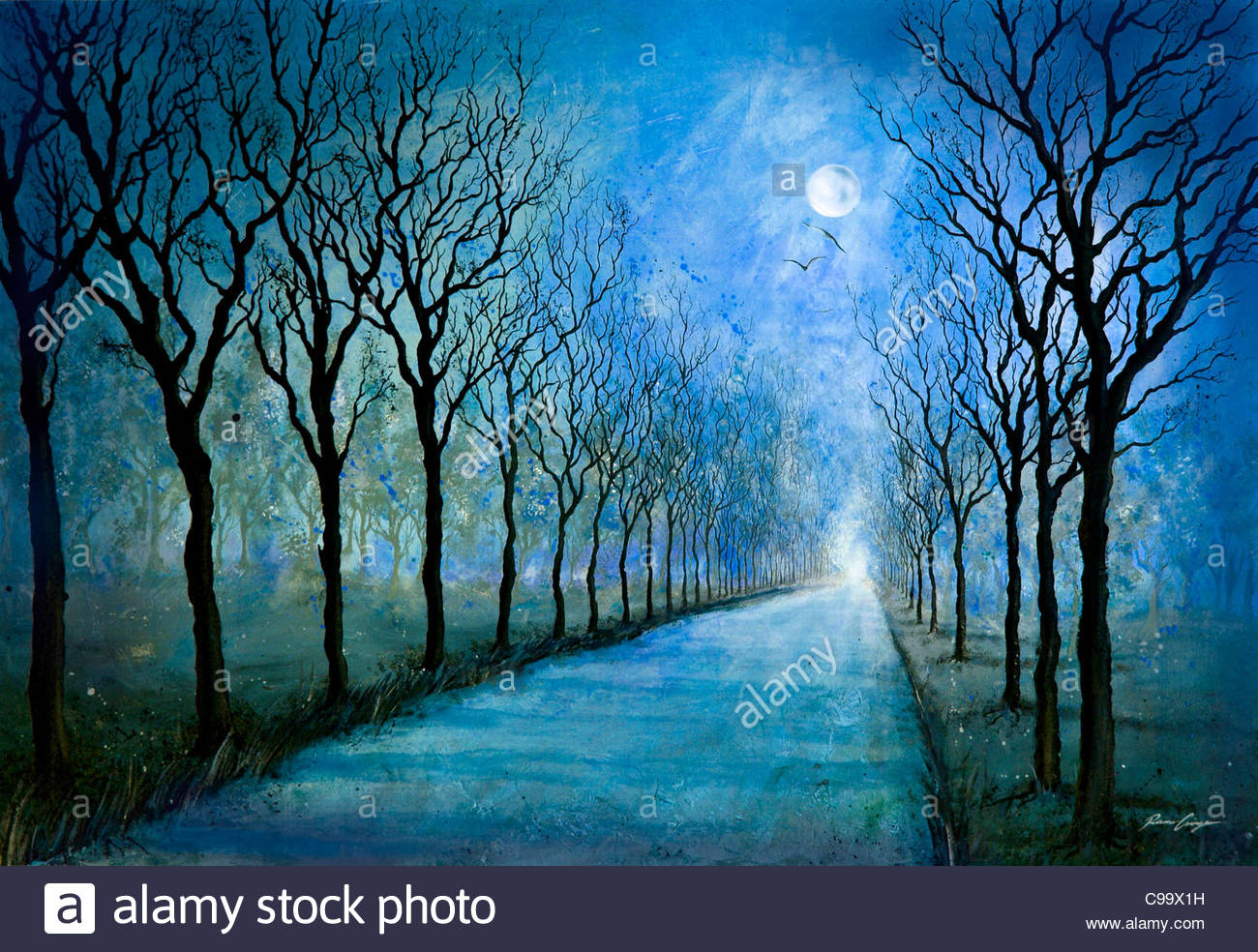 Night way WAy Street night moonlight full moon Allee baume ride vehicle tra - Stock Image