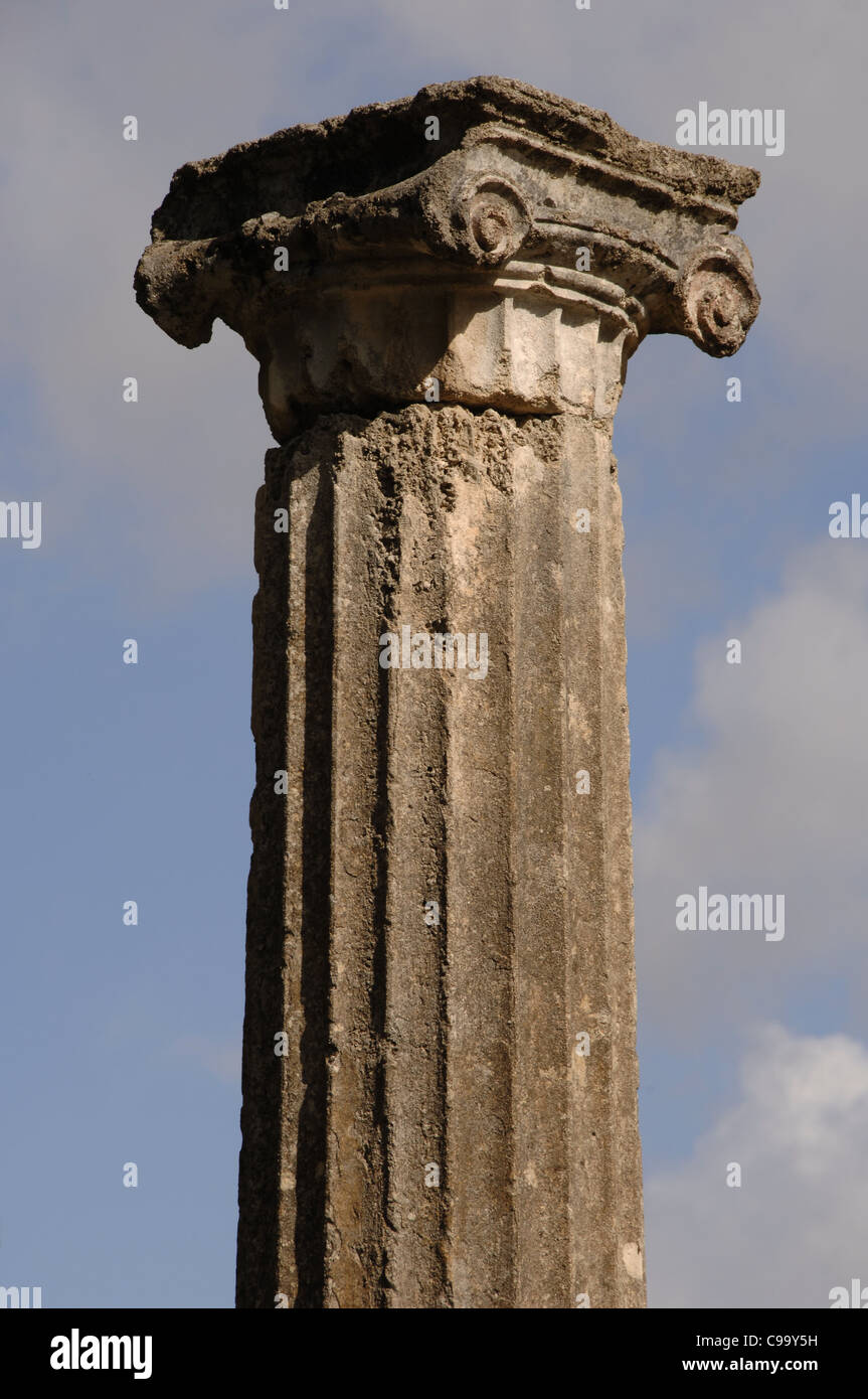 Greek Art. Sanctuary of Olympia. Ionic column at the Palaestra. Hellenistic period. 3rd century B.C.. Greece. - Stock Image