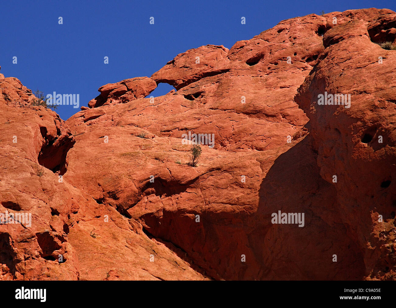 USA, Colorado, Colorado Springs, Garden of the Gods public park eroded sandstone rock. - Stock Image