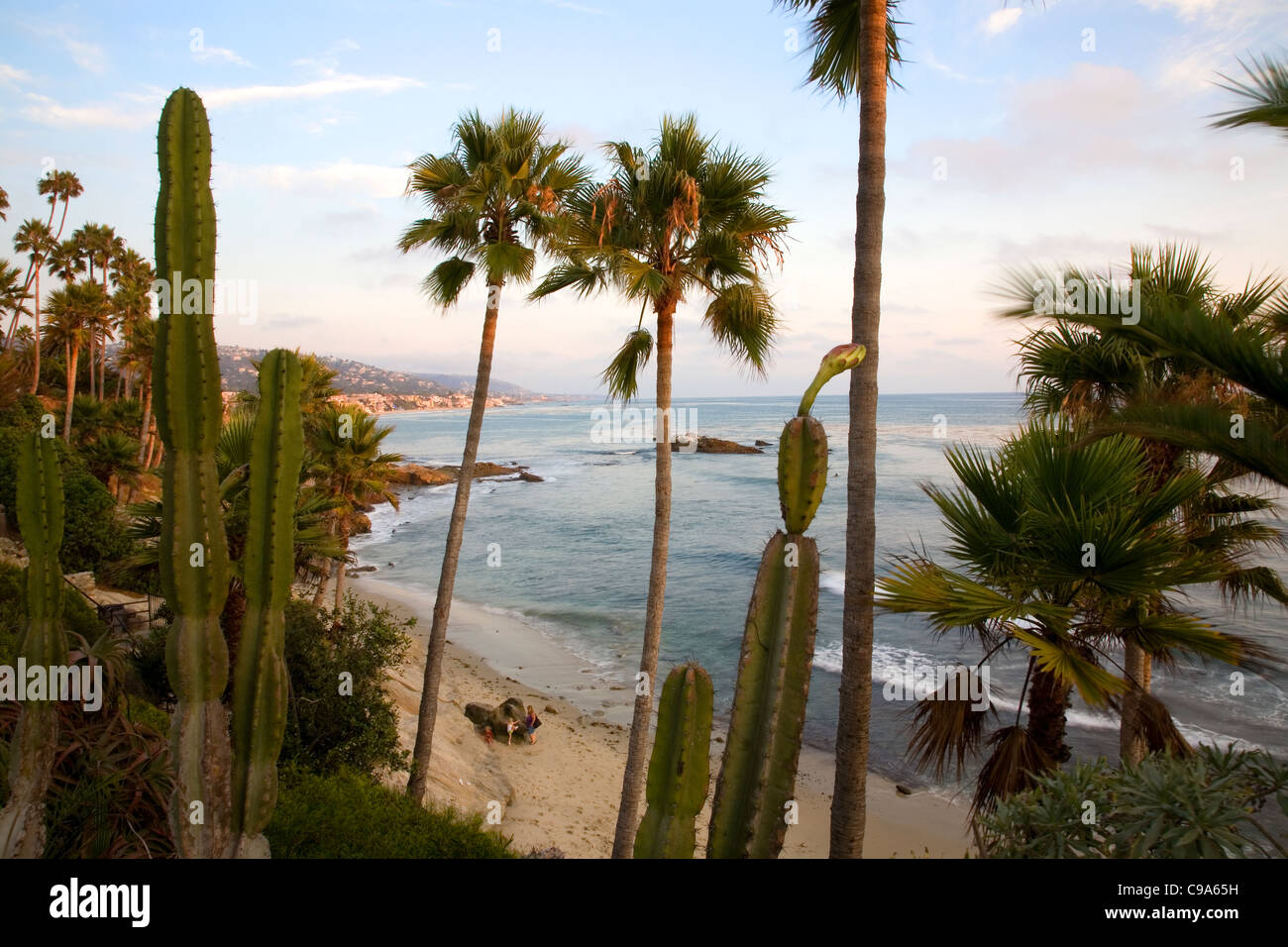 Looking down at Laguna Beach through Heisler Park - CA Stock Photo