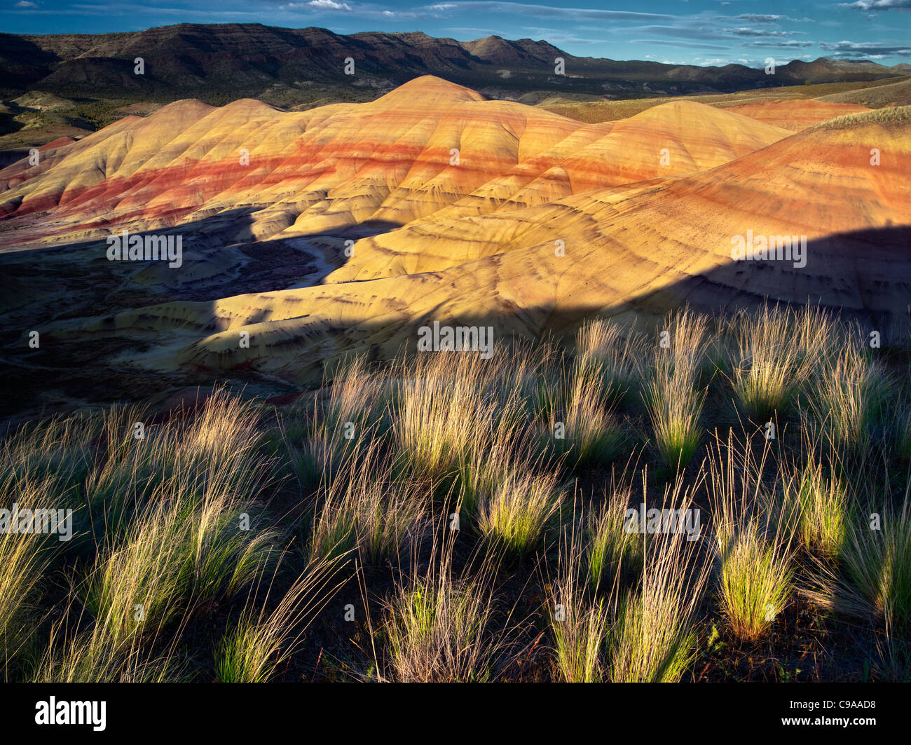 Grass and Painted Hills. John Day Fossil Beds National Monument. Oregon - Stock Image