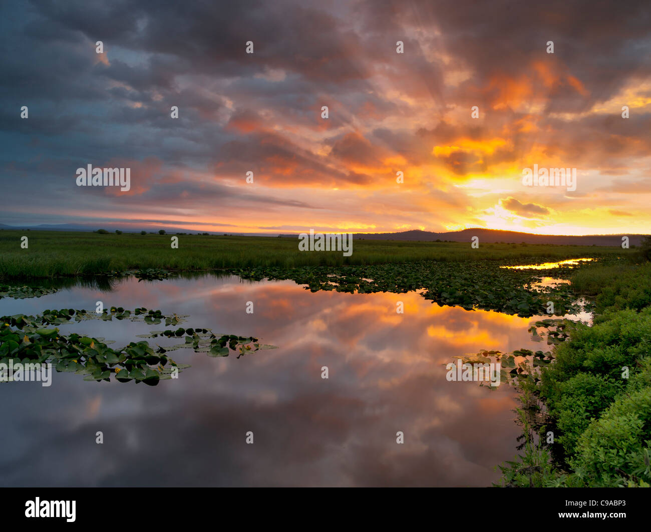 Sunrise at Klamath Marsh National Wildlife Refuge, Oregon - Stock Image