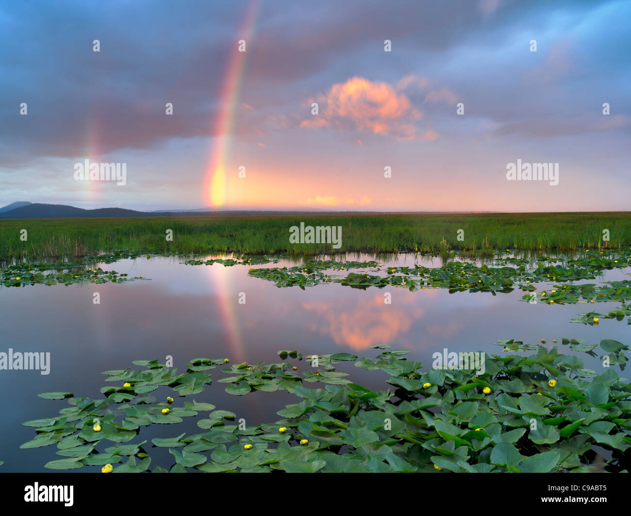 Rainbow at Klamath Marsh National Wildlife Refuge, Oregon - Stock Image