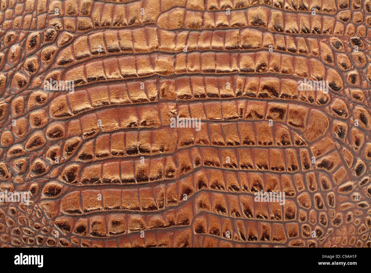 Leather Clothing Stock Photos Images Alamy Cut Engineer Crocodile Safety Steel Genuine Brown Image