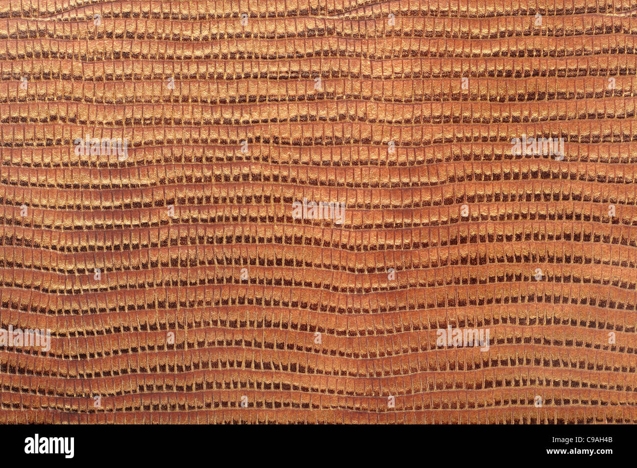 Reptile leather texture background - Stock Image