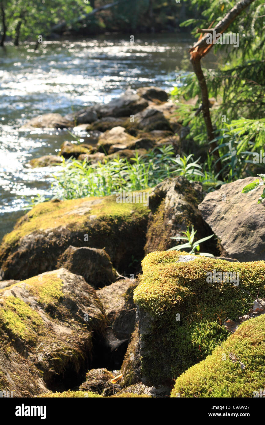Mossy rocks by a sparkling river surrounded by forests in summer Finland - Stock Image