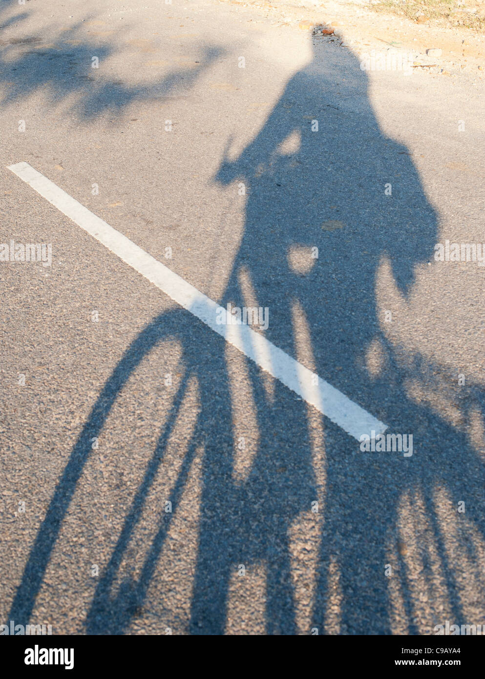 Man riding bicycle shadow on a road. India - Stock Image