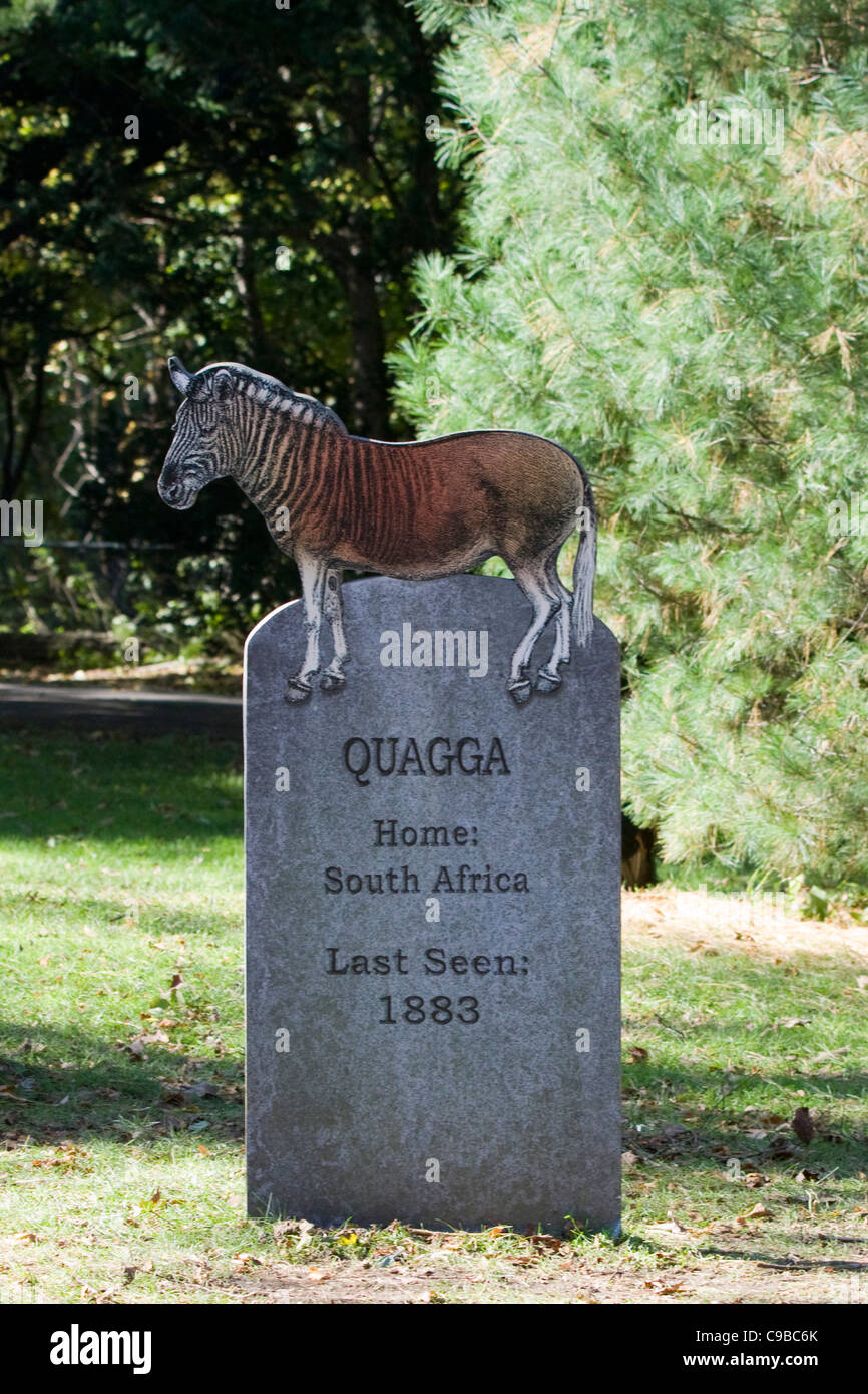 Welcome to the  Extinct Graveyard in America Quagga - Stock Image
