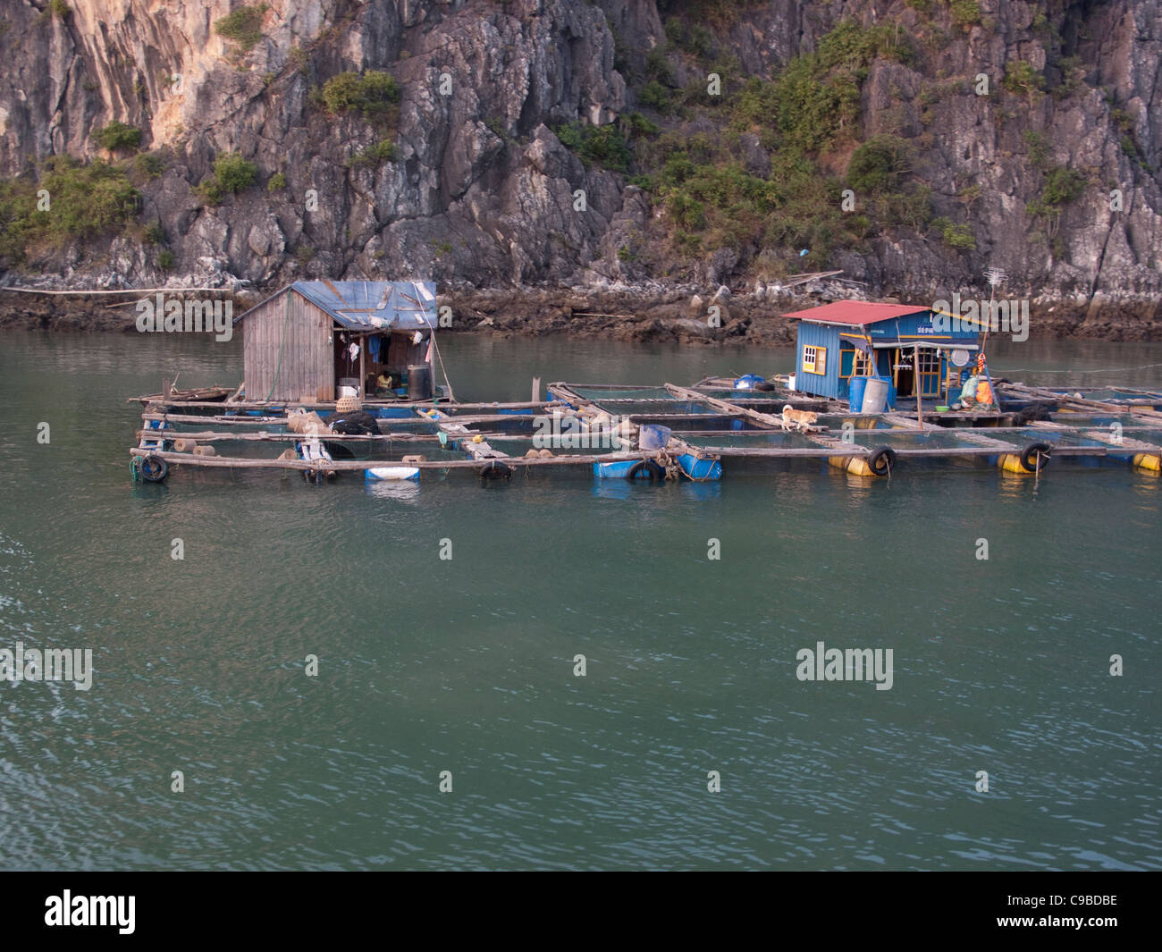Fish farms at the floating Village in Halong Bay in the South China Sea, Vietnam - Stock Image