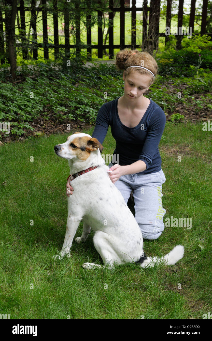 Girl, 12-13, applying flea and tick prevention medication (Advantage or Frontline) to a dog's skin - Stock Image