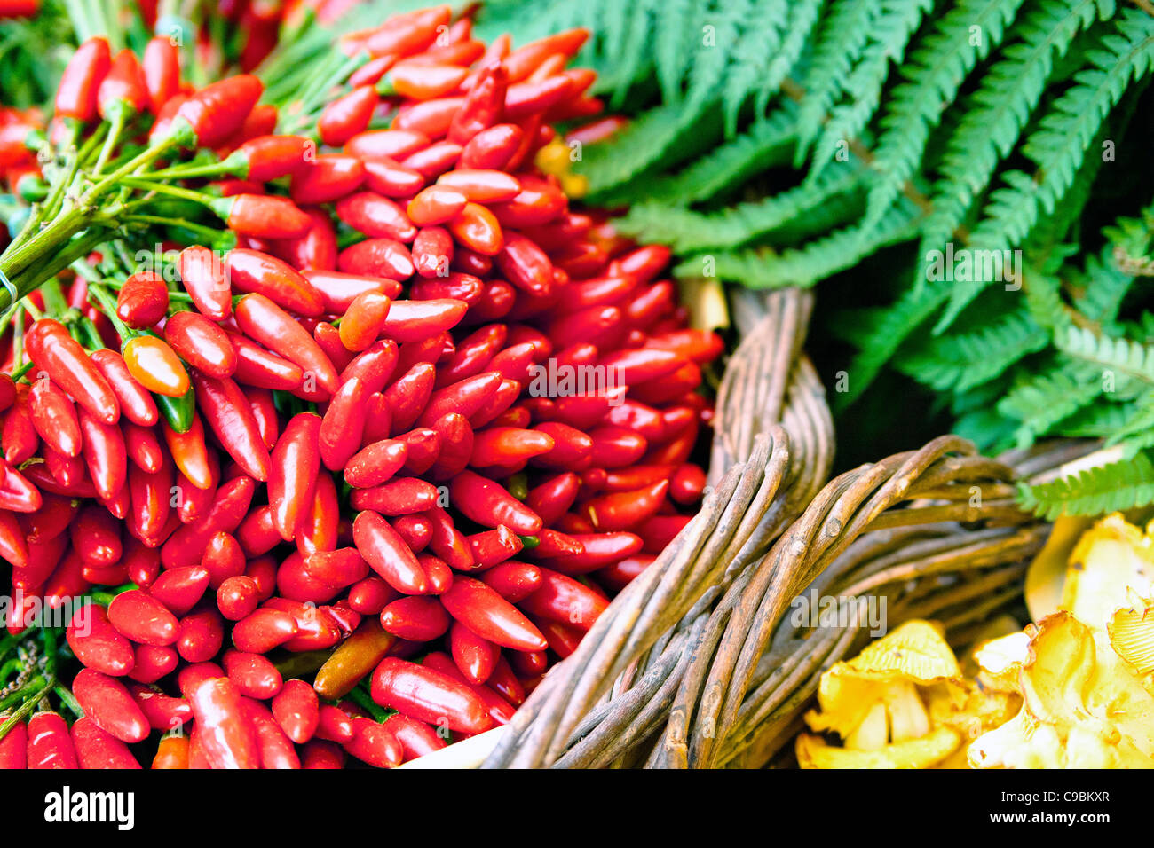 Red hot chili peppers - Stock Image