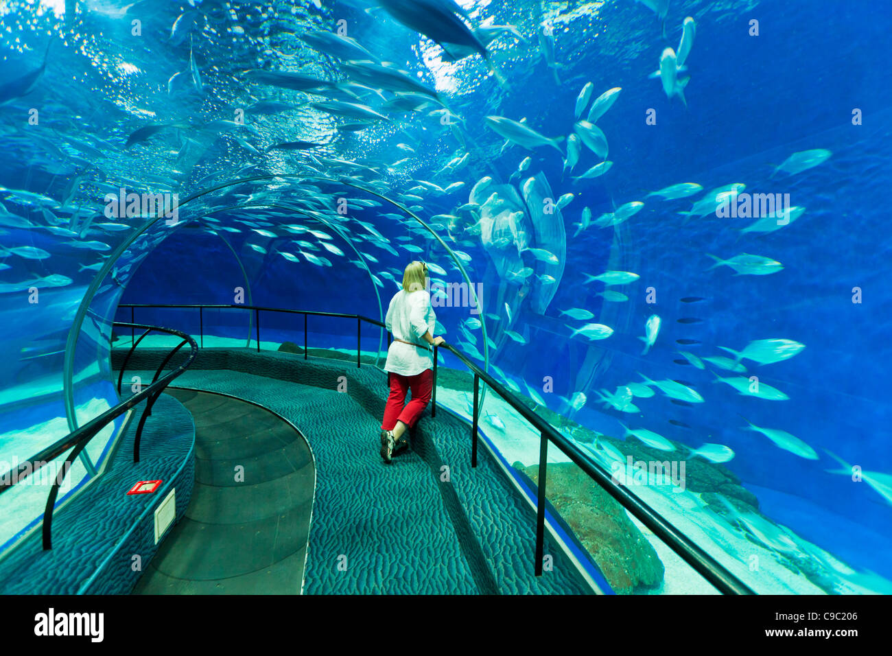 Female tourist at  Shanghai ocean Aquarium, Peoples Republic of China, PRC, Asia - Stock Image